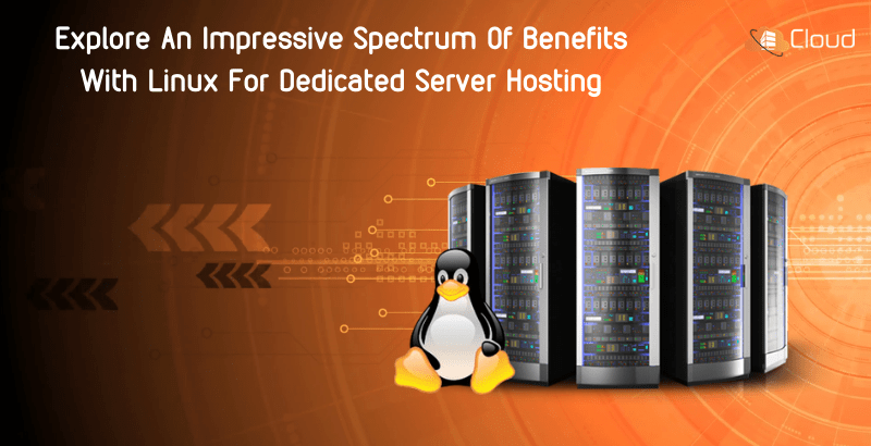 Explore-An-Impressive-Spectrum-Of-Benefits-With-Linux-For-Dedicated-Server-Hosting