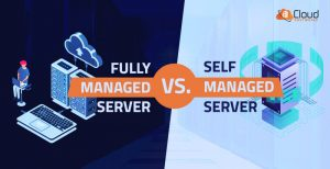 Fully managed server vs. self managed server