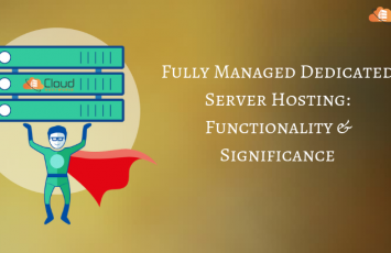 Fully-Managed-Dedicated-Server-Hosting_-Functionality-and-Significance-1