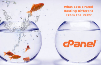 What sets cPanel hosting different from the rest