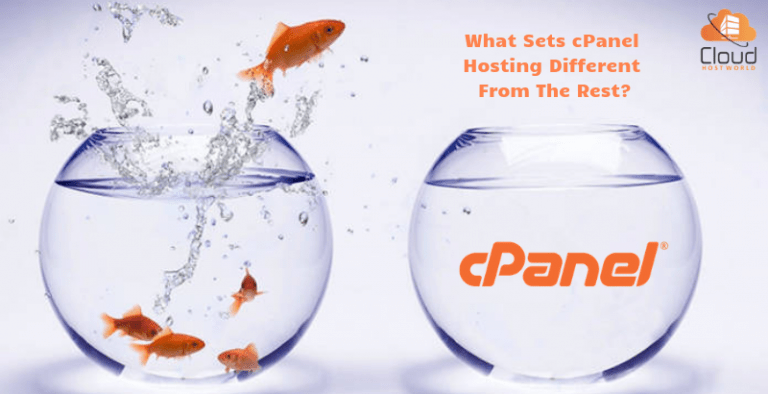 What Sets cPanel Hosting Different From The Rest?