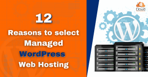 12 Reasons to select Managed WordPress Web Hosting
